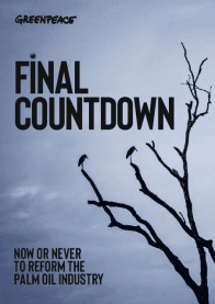 Final countdown report cover