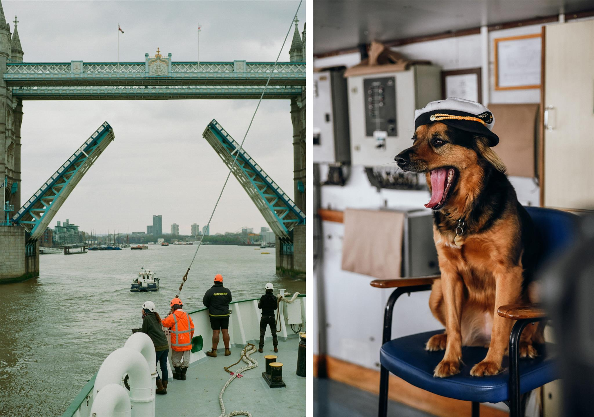 Image for People can't stop looking at these Instagram photos of a Greenpeace ship