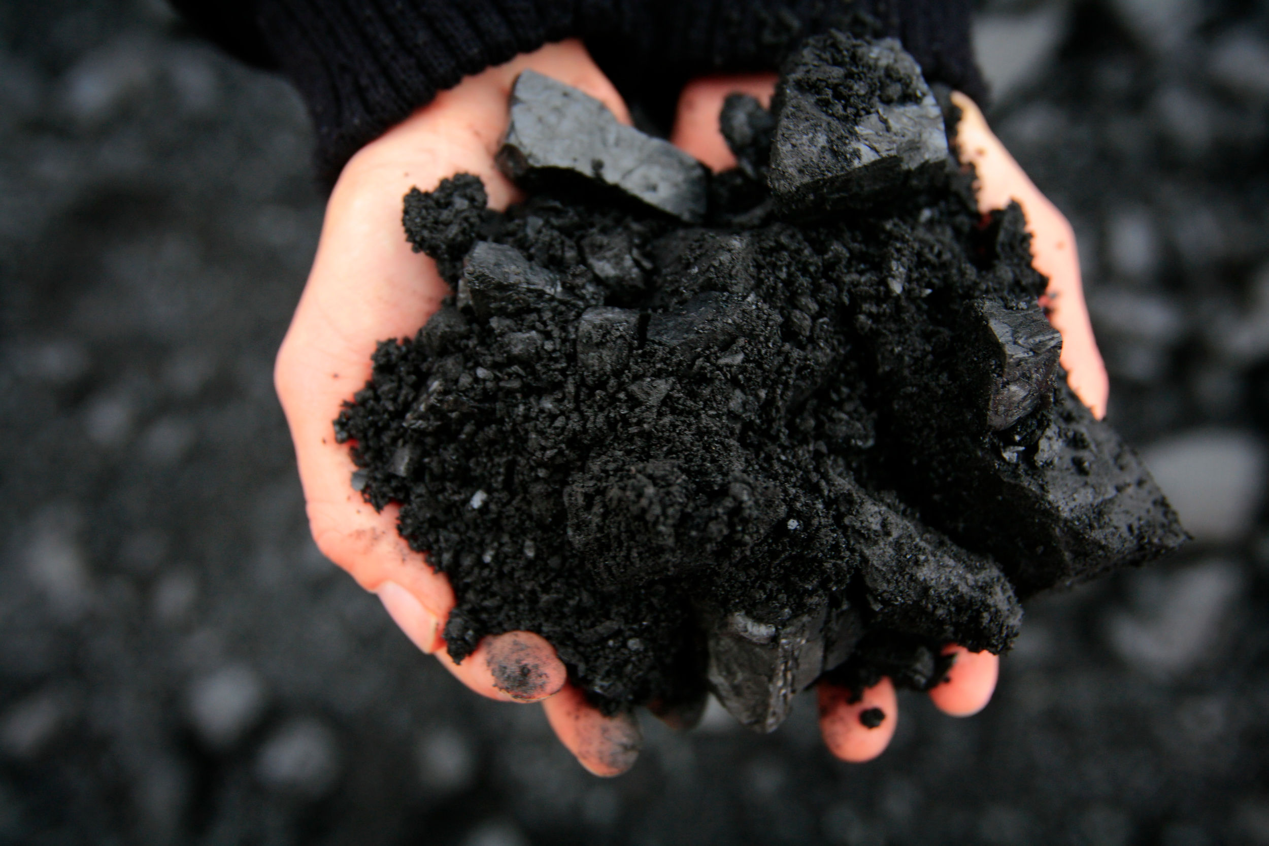 Close up of hands Full of Coal