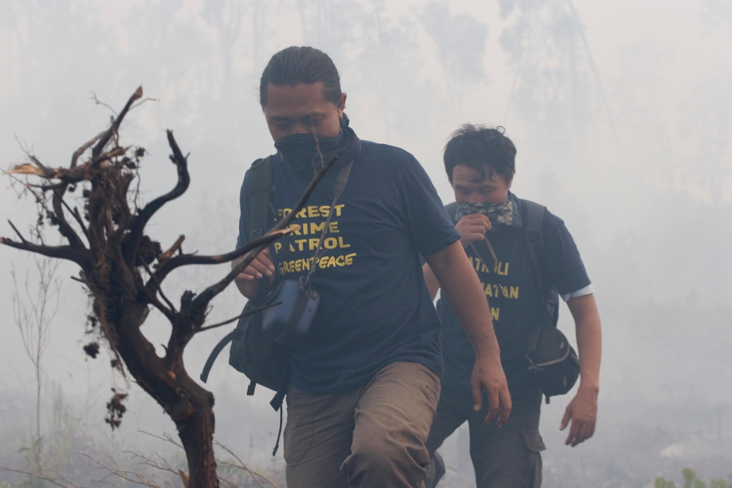 men wearing masks in smoky forest