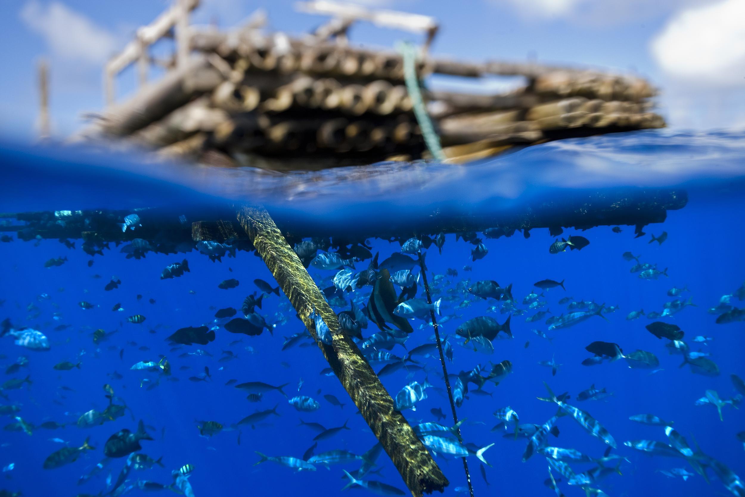 Disparo subacuático del dispositivo de agregación de peces