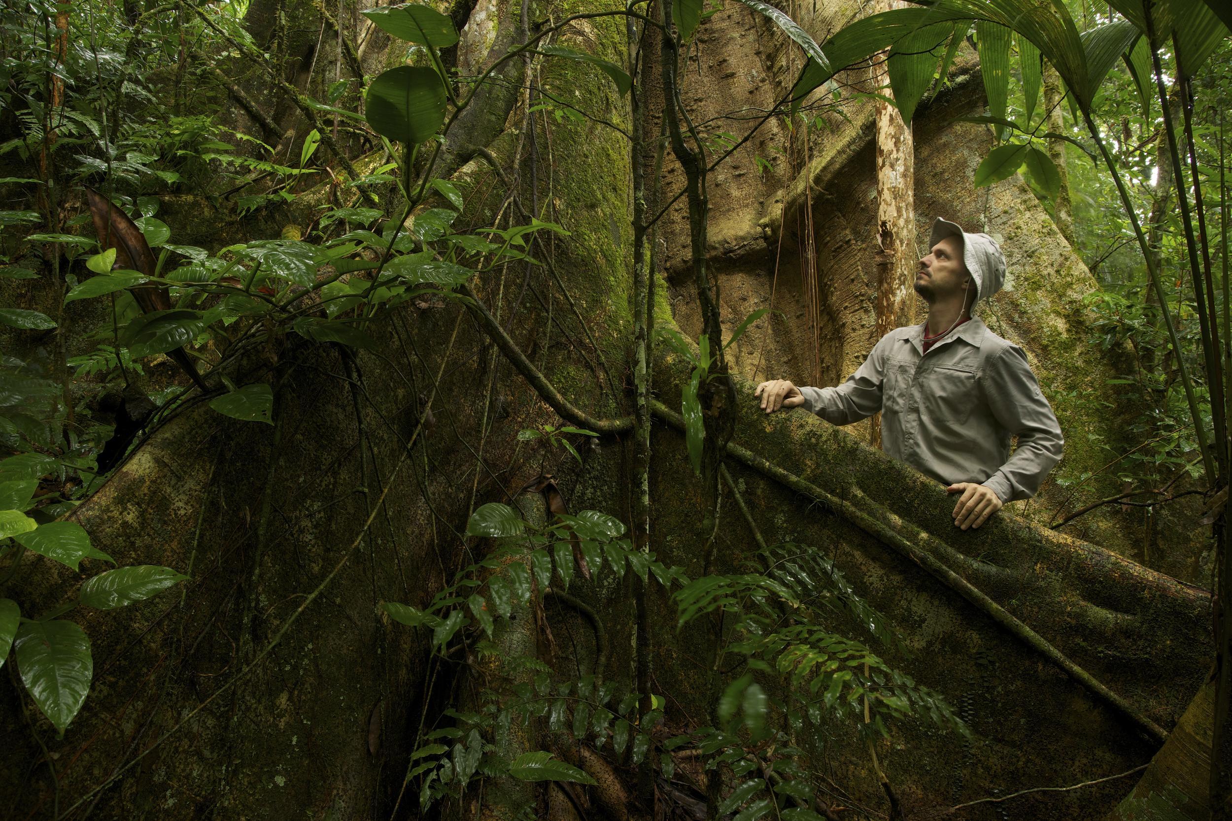 man in tropical rainforest