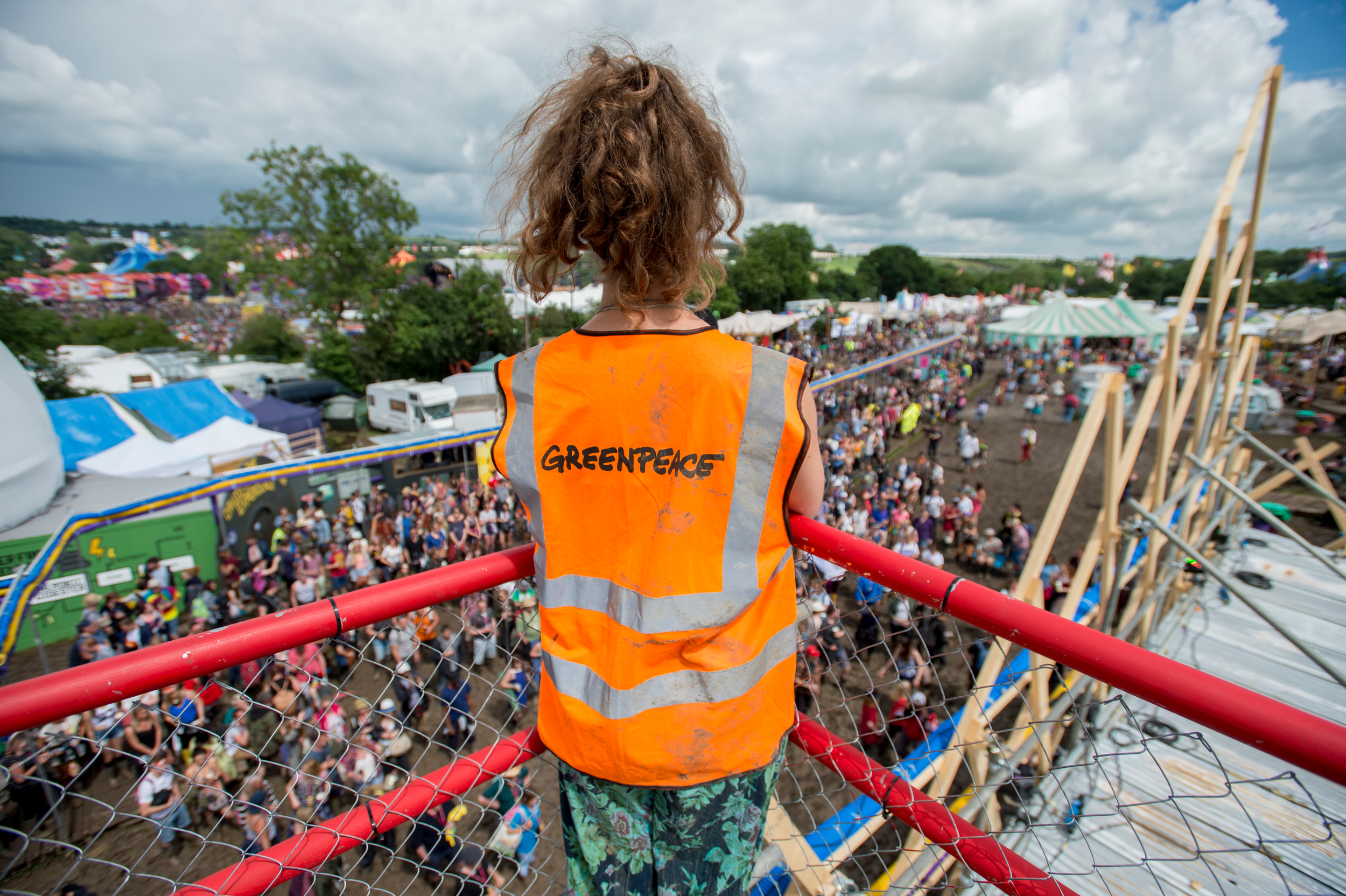 festival volunteer overlooking crowds
