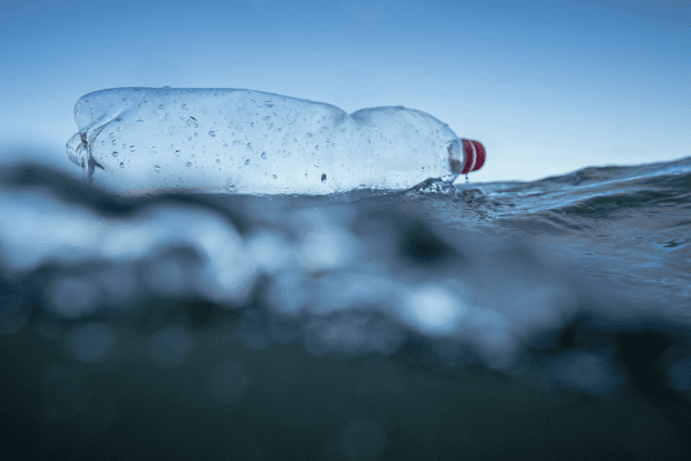 Plastic bottle floating in the North Sea