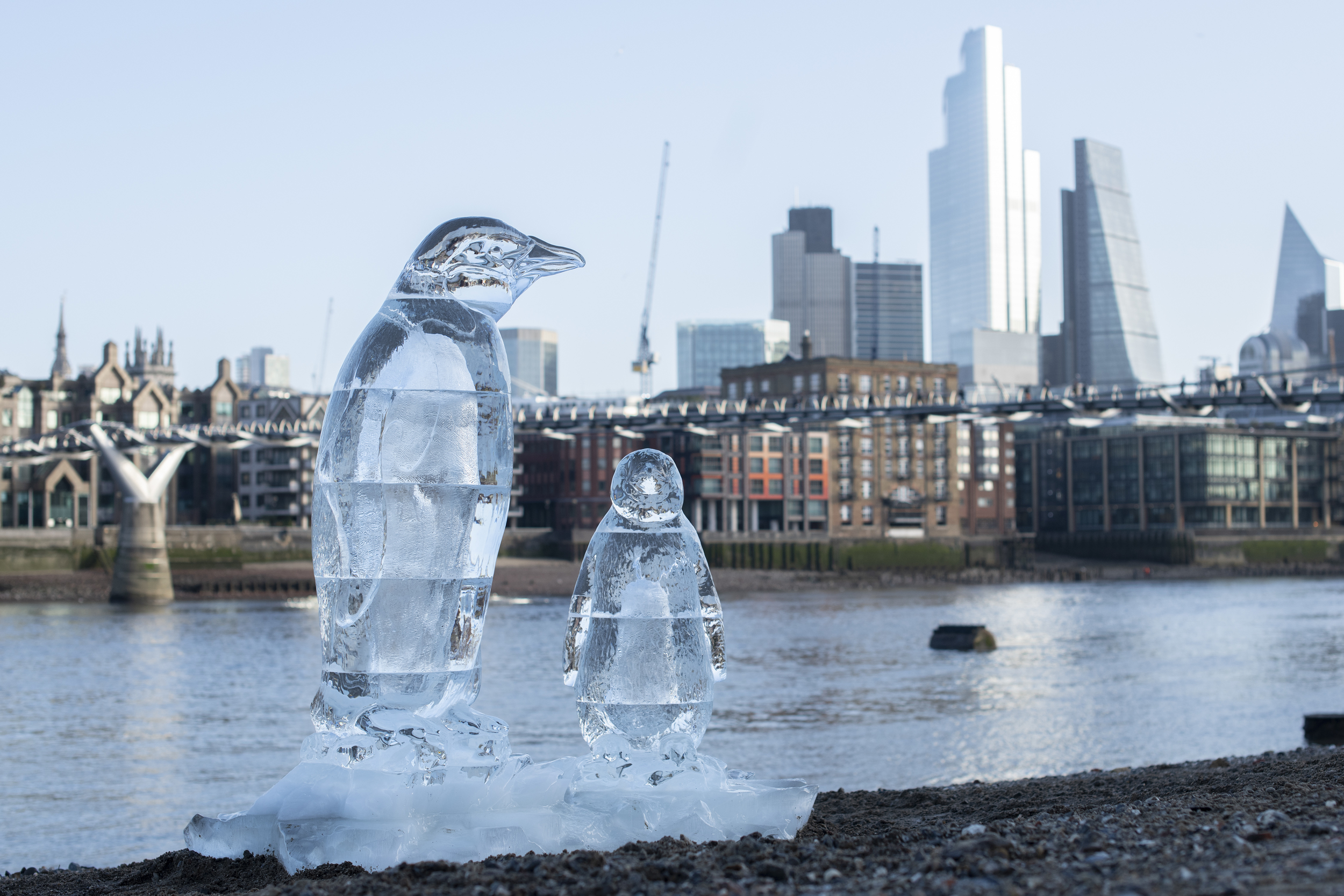 Two ice scuplture penguins melt on the banks of the River Thames with the city and Millennium footbridge in the background