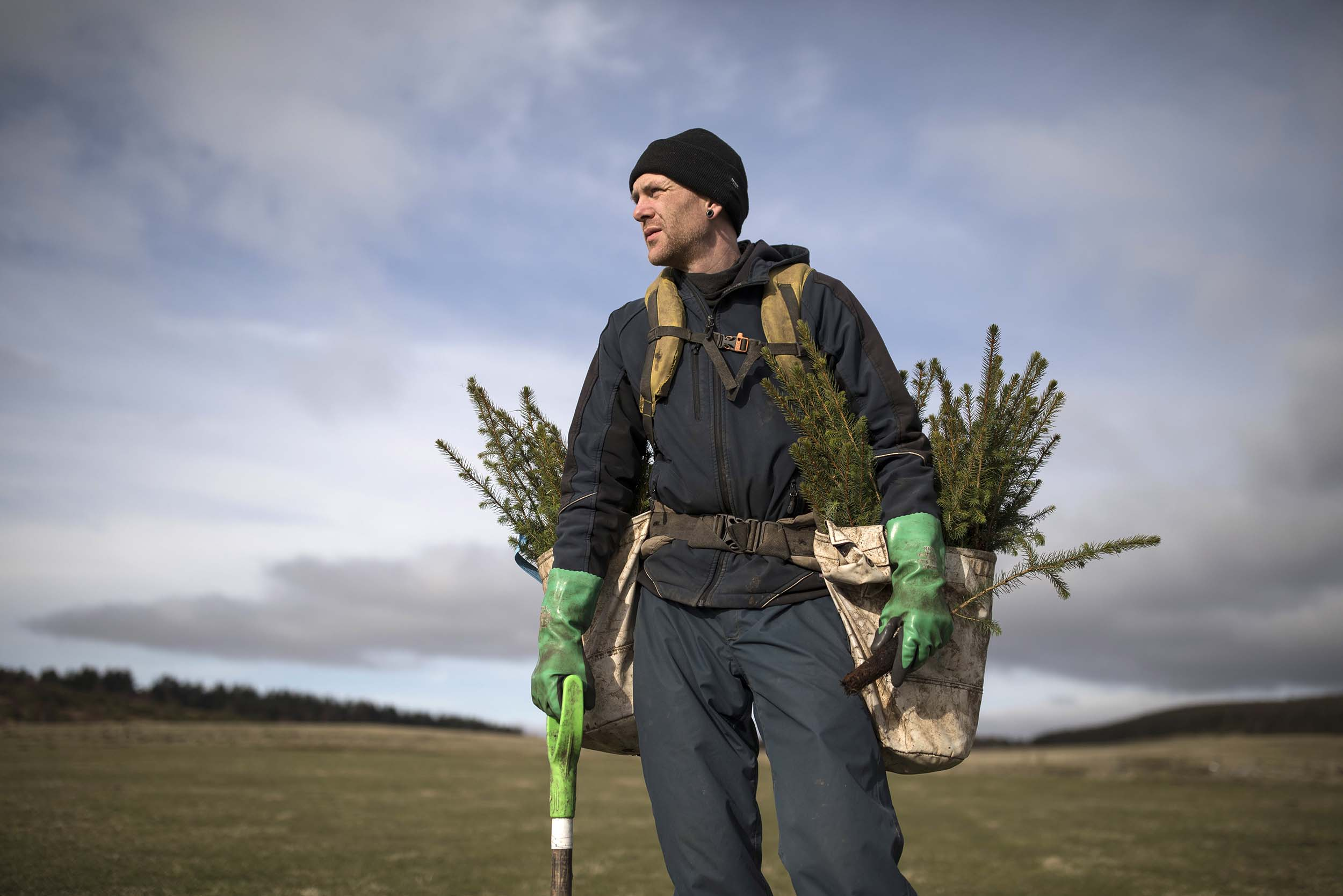 A man preparing to plant young trees - an example of green jobs