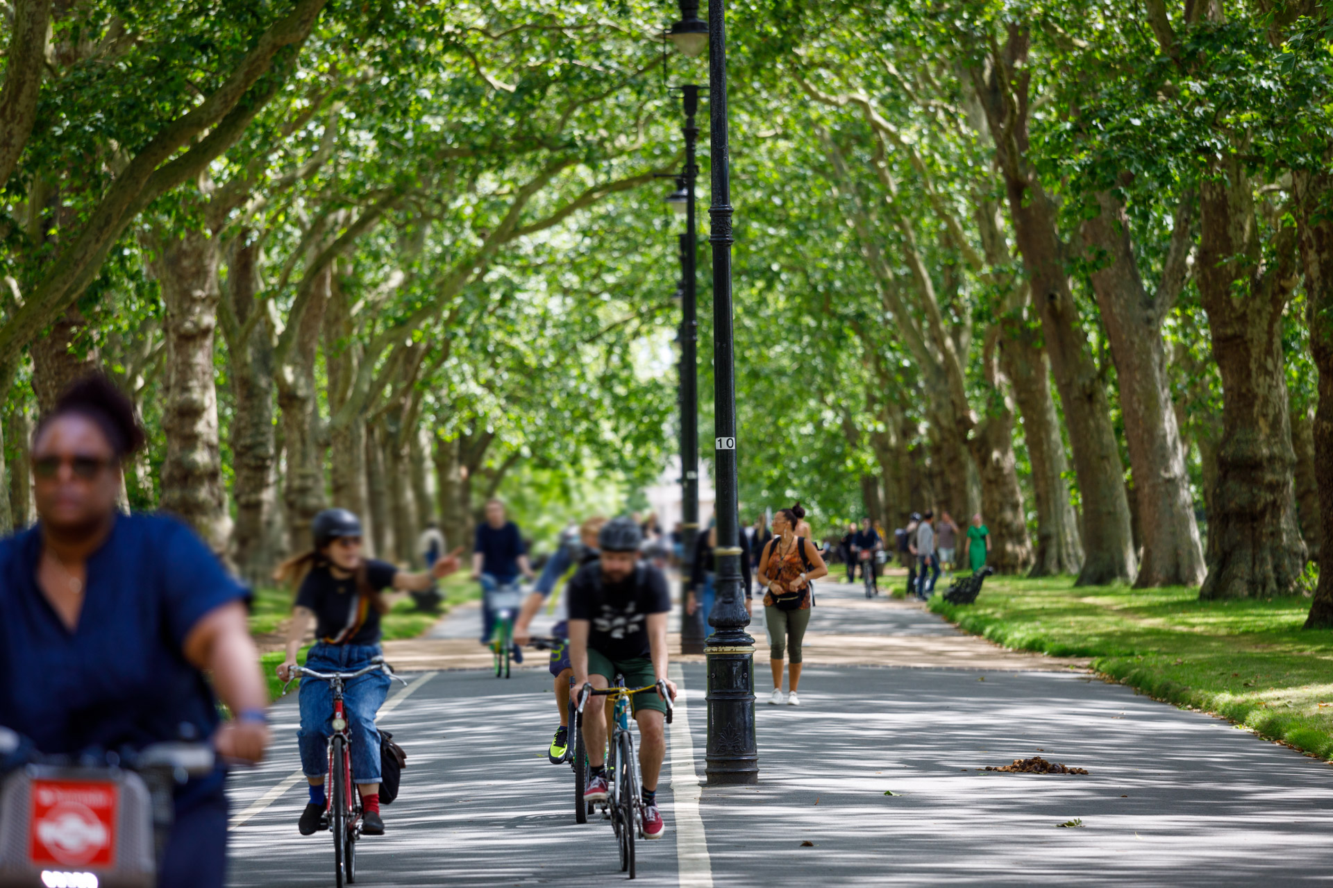 People on bikes ride along a wide, tree-lined pathway through a park