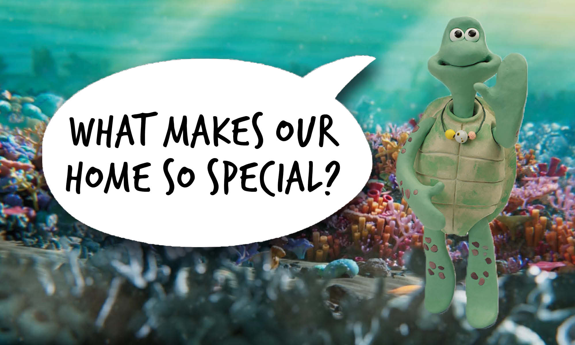 Adult female cartoon turtle waves at the camera. Speech bubble reads 'What makes our home so special?'