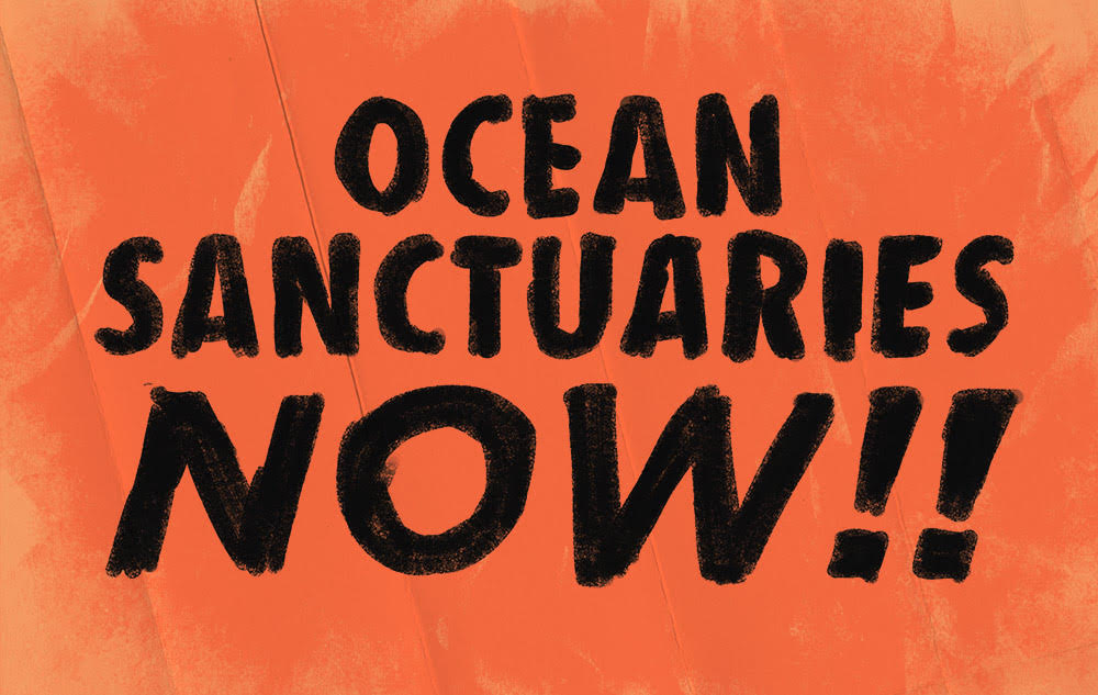 An orange placard with bold black text reading 'OCEAN SANCTUARIES NOW!!'