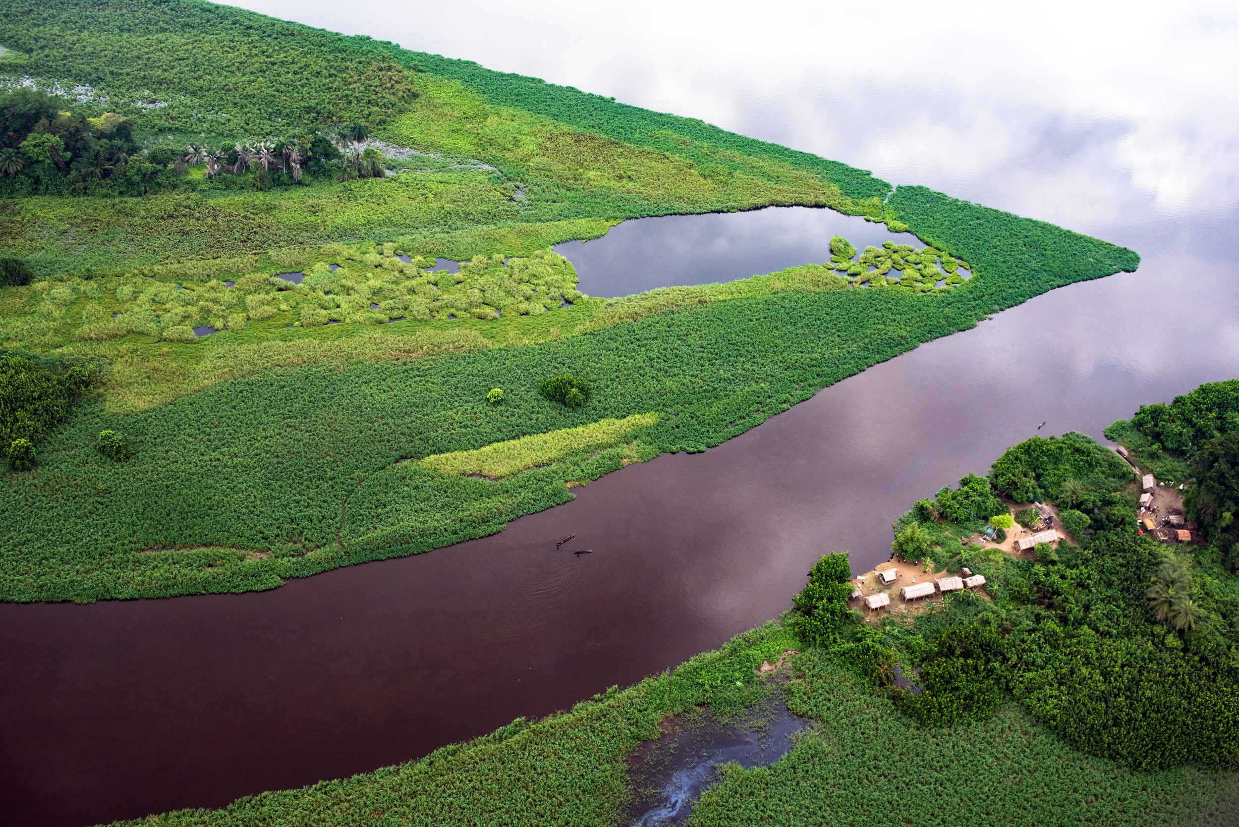 An aerial view of lush swampland, with a cloudy sky reflected in still water.