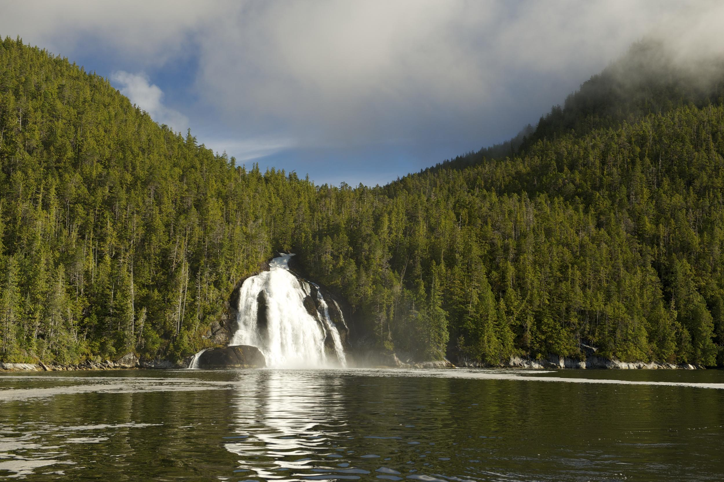 A waterfall runs out from a densely-forested hillside and into a calm lake in the Great Bear Rainforest