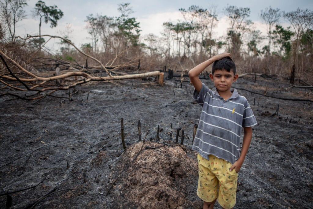 A child stands in a burned forest landscape, looking seriously into the camera and holding his hand on the top of his head.