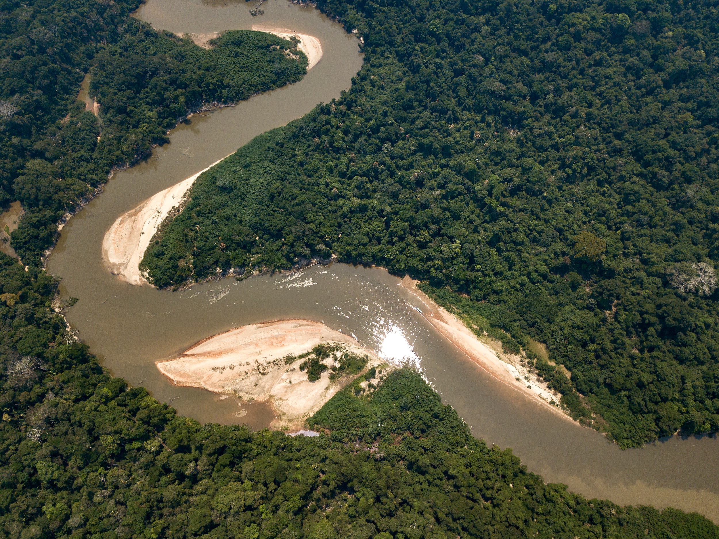 Aerial view of a river glinting in the sun, winding through dense rainforest, with bends and beaches at each bend.