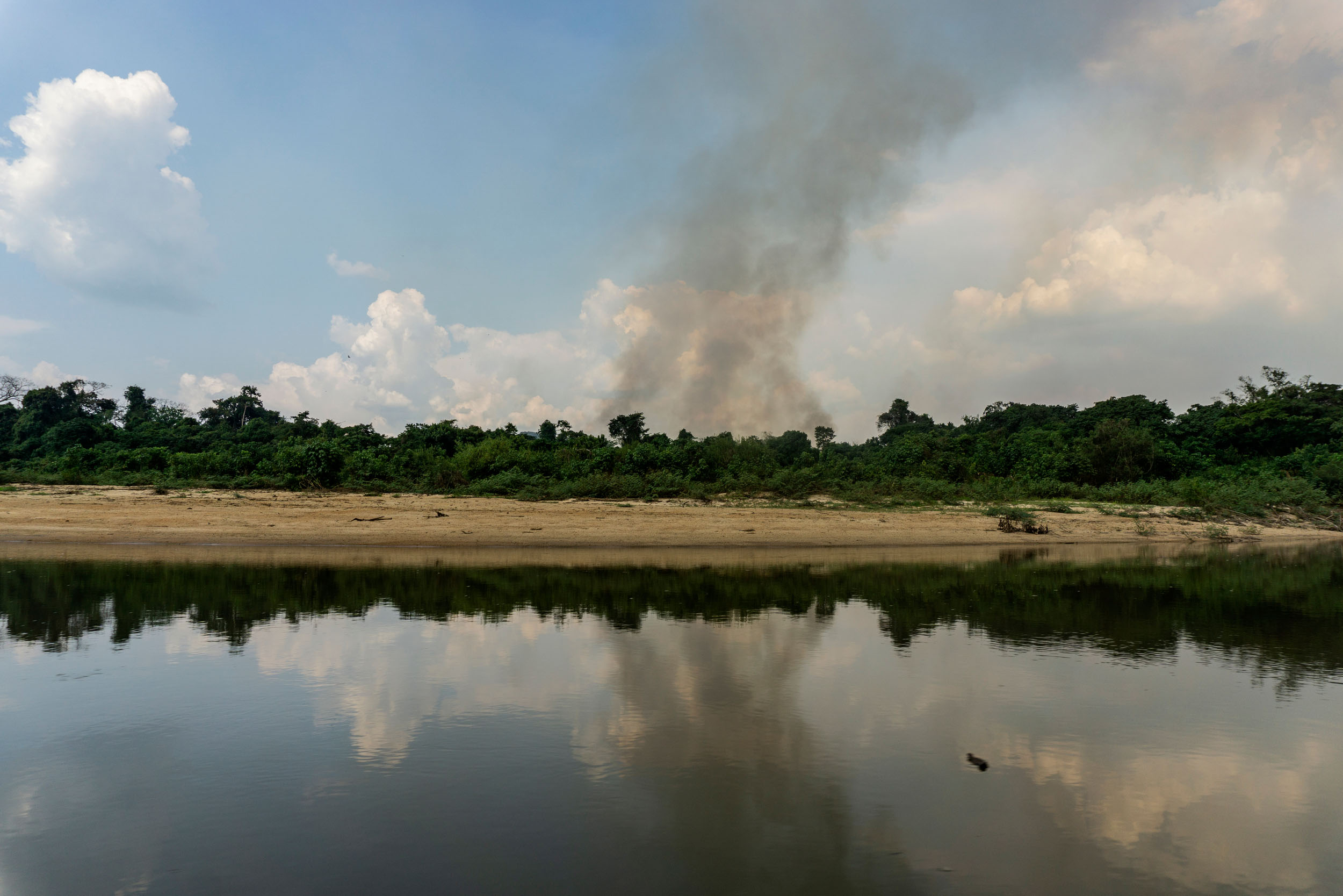 River in the foreground, with a beach and rainforest, and smoke rising from a small area, indicating a forest fire