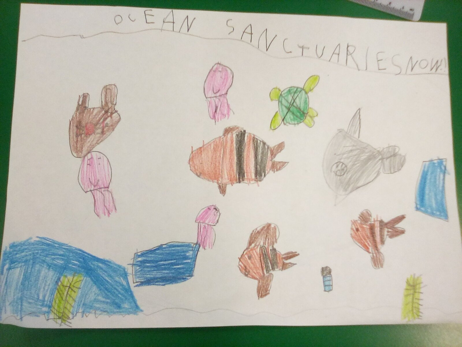 Poster drawn by a school pupil calling for better ocean protection. Features colourful sea creatures and a message to Prime Minister Boris Johnson