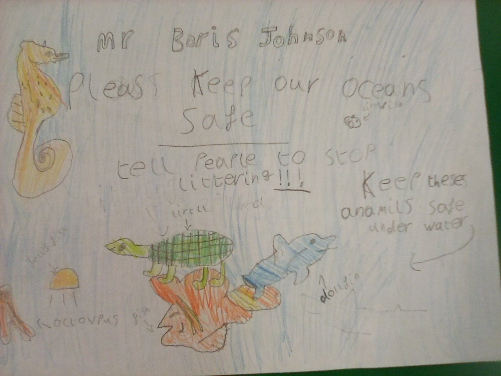 Poster drawn by a school pupil calling for better ocean protection. Features a seahorse, a turtle, and various fish.