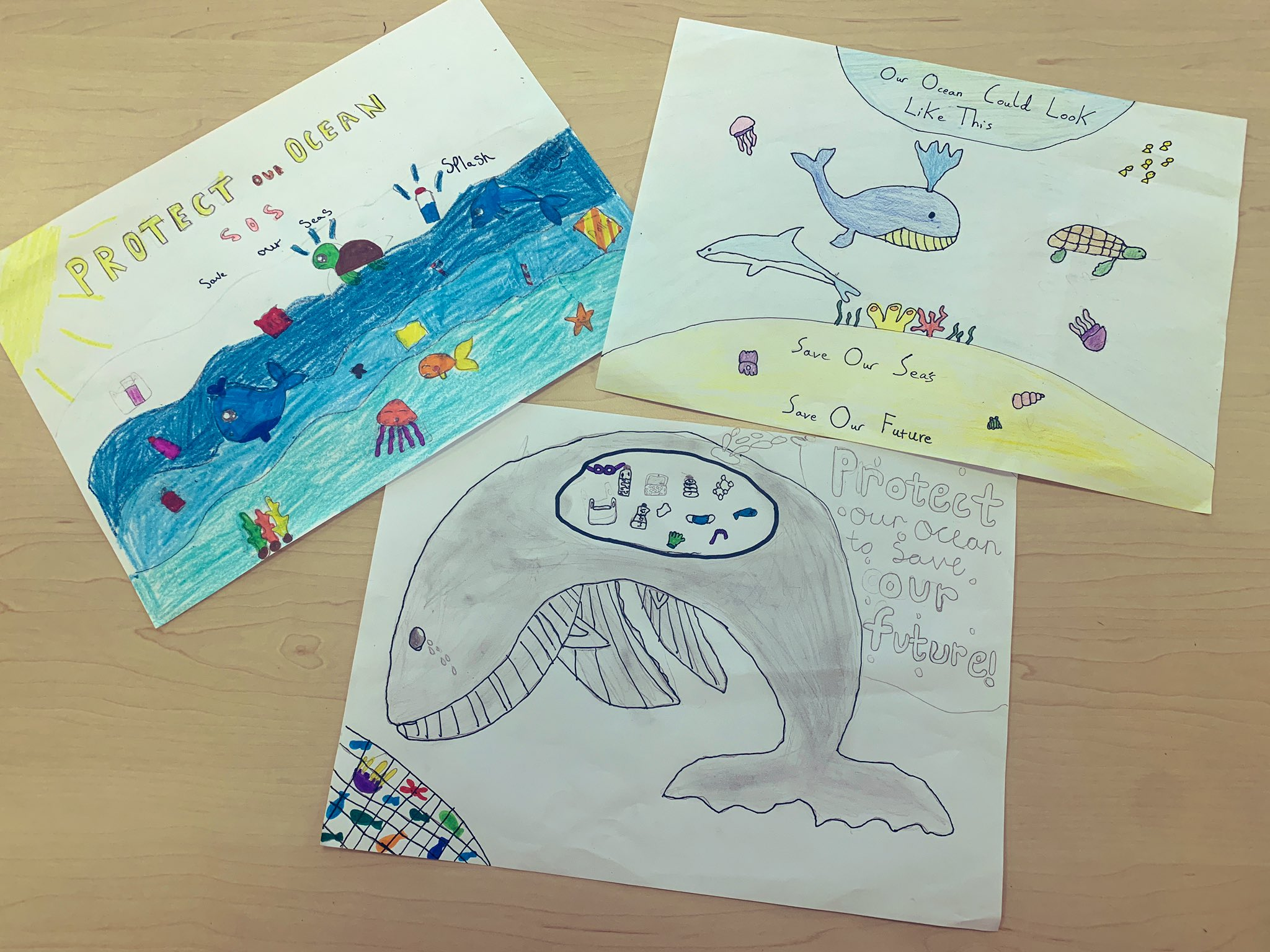 Selection of posters drawn by school children calling for better ocean protection