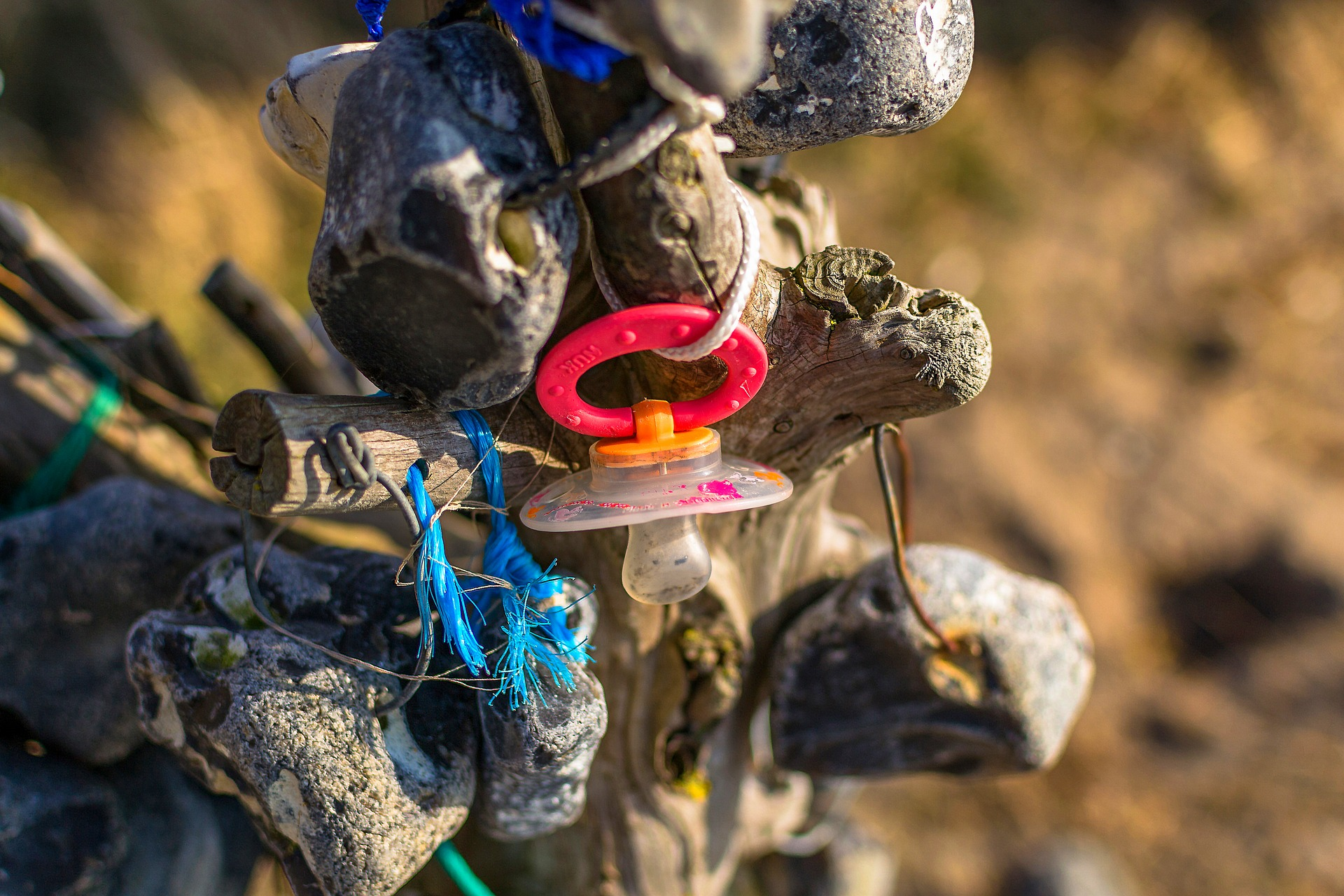 A weathered child's dummy hangs on a piece of driftwood along with other pieces of plastic waste