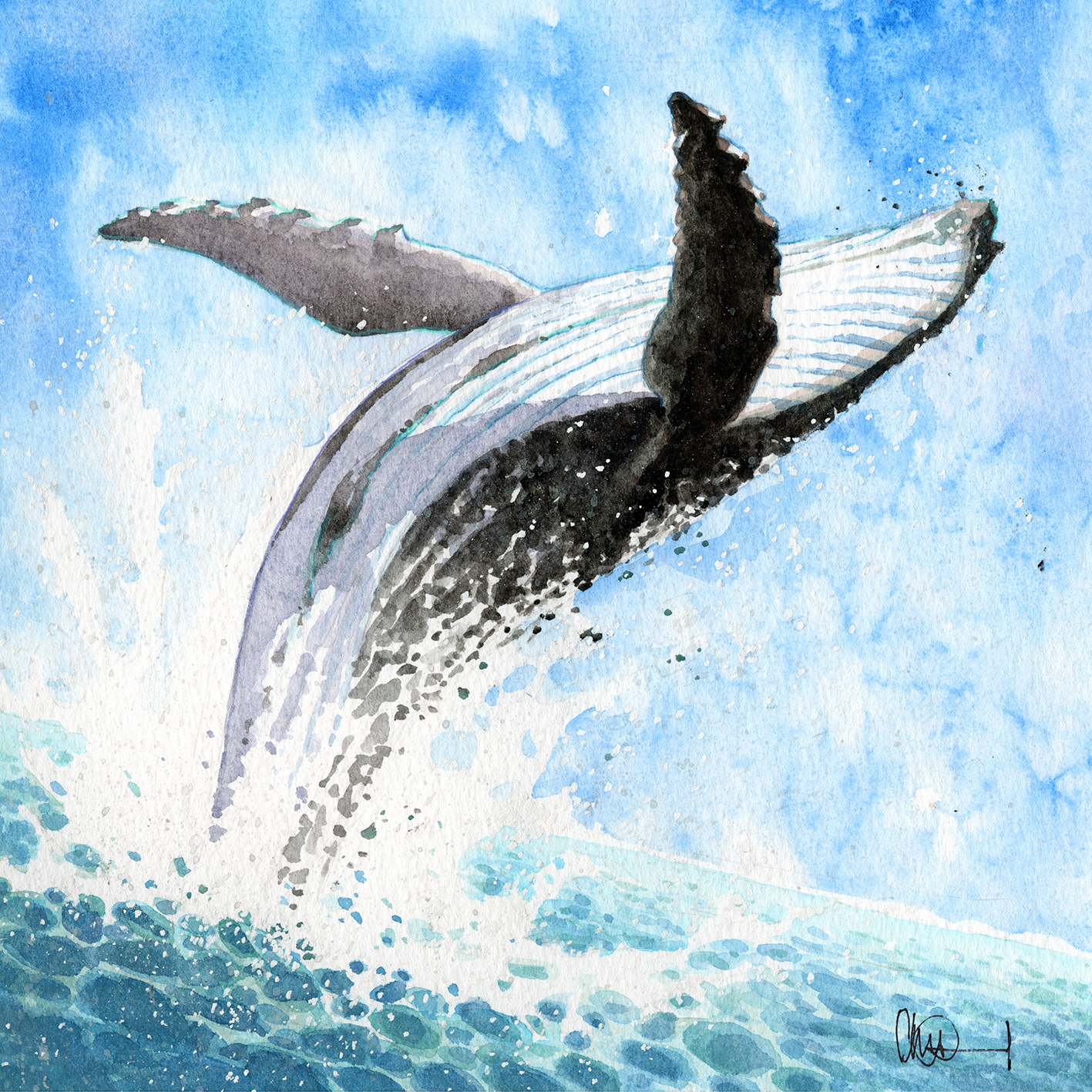 Watercolour painting of a black and white whale breaching in a blue sea with white foam spray all around