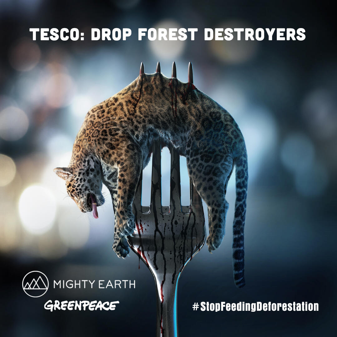 "Composite illustration shows a dead jaguar impaled on a kitchen fork. Text reads: ""Tesco: drop forest destroyers"""