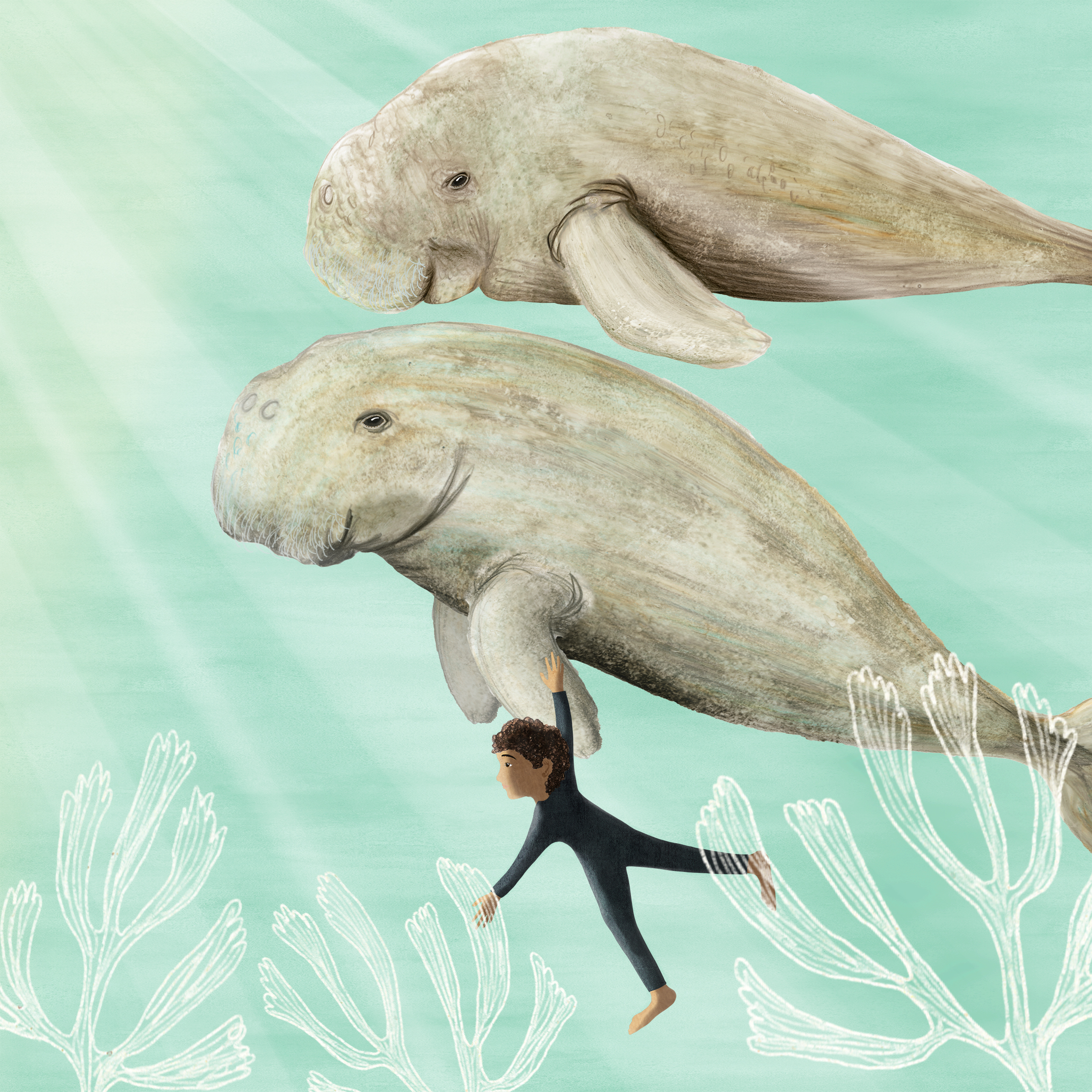Two large grey dugongs, whale shaped with pronounced foreheads and noses and large flippers, on a pale green background. One dugong's flipper is being held by a small boy in a wetsuit, about a quarter of the size of the dugong. There are sunhbeams pouring in to the picture from the top left and three springs of seakelp in white underneath.