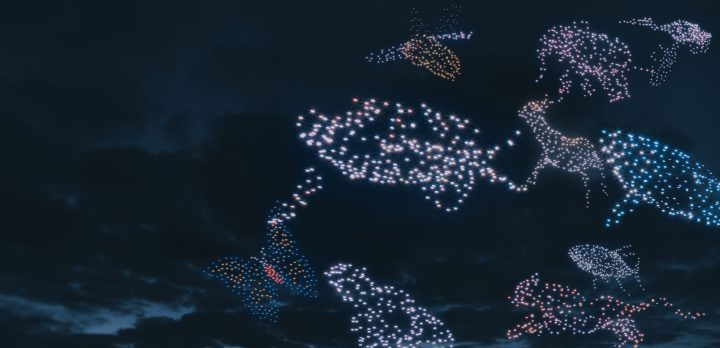 Illuminated drones form the shape of various animals against the night sky