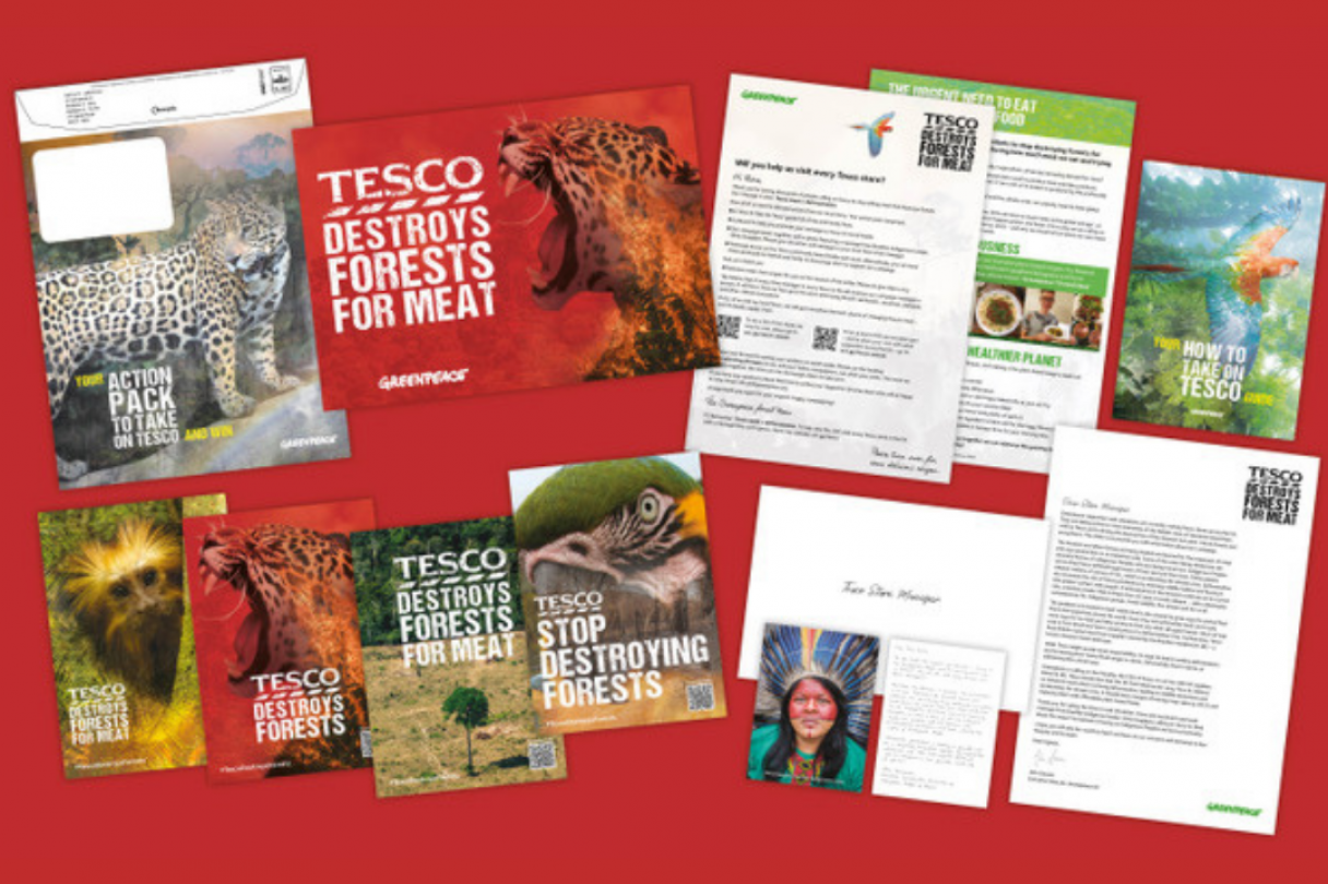 Collection Tesco forest action pack materials