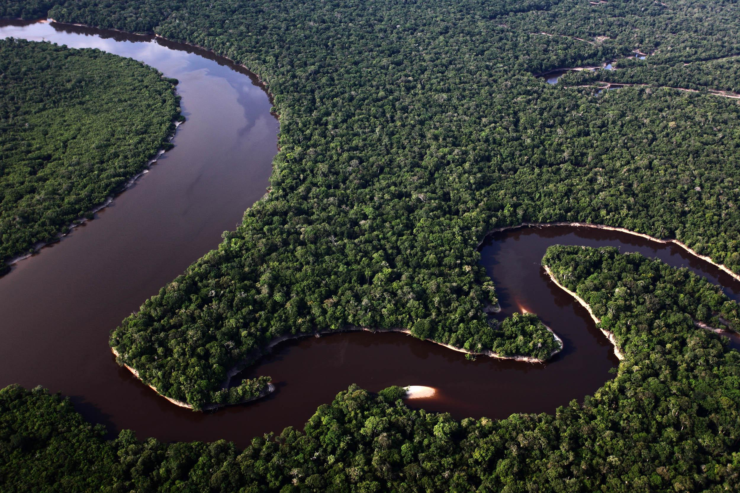 A forested landscape with a river winding through it