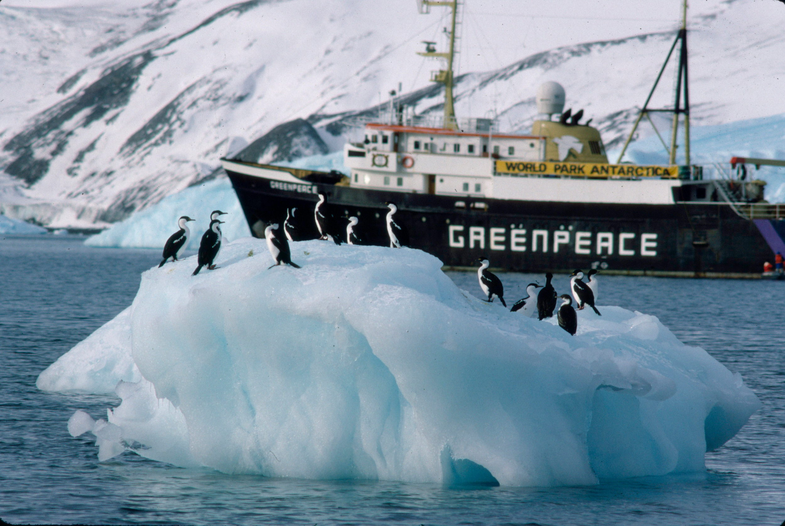 A ship in an icy landscape with penguins in front of it on an iceberg